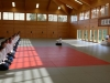aikido-verbandslehrgang-oeav-budokan-wels-2013-15