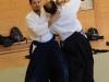aikido-verbandslehrgang-oeav-budokan-wels-2013-161