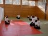 aikido-verbandslehrgang-oeav-budokan-wels-2013-17