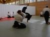 aikido-verbandslehrgang-oeav-budokan-wels-2013-19