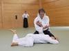 aikido-verbandslehrgang-oeav-budokan-wels-2013-209