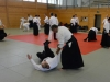 aikido-verbandslehrgang-oeav-budokan-wels-2013-23