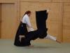 aikido-verbandslehrgang-oeav-budokan-wels-2013-28