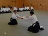aikido-verbandslehrgang-oeav-budokan-wels-2013-333