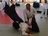 aikido-verbandslehrgang-oeav-budokan-wels-2013-41