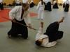 aikido-verbandslehrgang-oeav-budokan-wels-2013-62