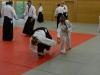 aikido-verbandslehrgang-oeav-budokan-wels-2013-72