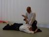 aikido-verbandslehrgang-oeav-budokan-wels-2013-87