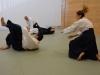 aikido-verbandslehrgang-oeav-budokan-wels-2013-90