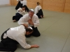 aikido-verbandslehrgang-oeav-budokan-wels-2013-91