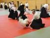 Aikido-Lehrgang-Wels-Budokan-OeAV-2014-05-209