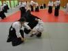 Aikido-Lehrgang-Wels-Budokan-OeAV-2014-05-254