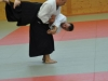 Aikido-Lehrgang-Wels-Budokan-OeAV-2014-05-277