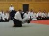 Aikido-Lehrgang-Wels-Budokan-OeAV-2014-05-308