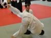 Aikido-Lehrgang-Wels-Budokan-OeAV-2014-05-321