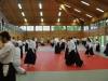 Aikido-Lehrgang-Wels-Budokan-OeAV-2014-05-337