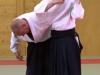 Aikido-OEAVLG2014_074