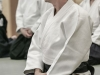 Aikido-OEAVLG2014_189
