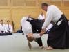 Aikido-OEAVLG2014_206