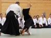 Aikido-OEAVLG2014_228