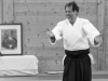 Aikido-OEAVLG2014_310