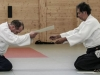 Aikido-OEAVLG2014_316